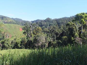 Madagascar 2018, Landscape